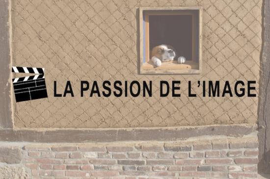 Carton passion+fond